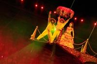 Цирк «Вива, Зорро!» в Туле , Фото: 78