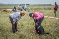Международная выставка собак, Барсучок. 5.09.2015, Фото: 68