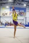 Спортивная гимнастика в Туле 3.12, Фото: 122