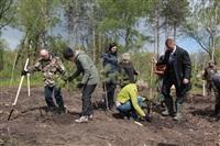 Высадка молодого леса, Фото: 32