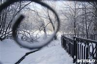 Зимняя сказка Платновского парка, Фото: 6