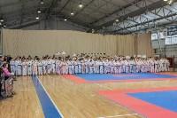 Соревнования по восточному боевому единоборству, Фото: 9