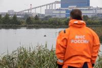 В Туле спасли лебедя с одним крылом, Фото: 14