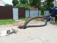 Очередной провал дороги в Мясново, Фото: 11