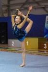 Соревнования по художественной гимнастике 31 марта-1 апреля 2016 года, Фото: 99