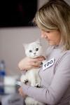 Выставка кошек. 4 и 5 апреля 2015 года в ГКЗ., Фото: 122