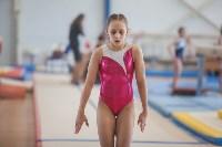 Первенство ЦФО по спортивной гимнастике, Фото: 41