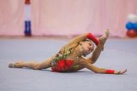 Открытый кубок региона по художественной гимнастике, Фото: 43