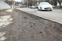 Мусор и пыль на улицах Тулы, Фото: 10