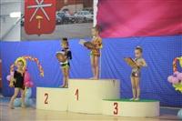 IX Всероссийский турнир по художественной гимнастике «Старая Тула», Фото: 14