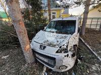В Туле Mazda-3 сбила рябину и влетела в припаркованный Peugeot , Фото: 12