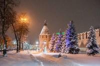 Сказочная зима в Туле, Фото: 4