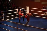 В Туле прошла матчевая встреча звезд кикбоксинга, Фото: 25