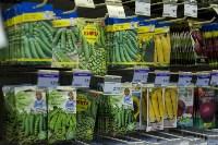 Леруа Мерлен: Какие выбрать семена и правильно ухаживать за рассадой?, Фото: 6