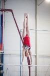 Первенство ЦФО по спортивной гимнастике среди юниорок, Фото: 41