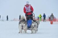 Праздник северных собак на Куликовом поле , Фото: 82