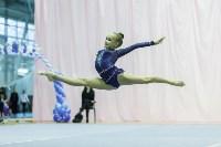 Кубок общества «Авангард» по художественной гимнастики, Фото: 21
