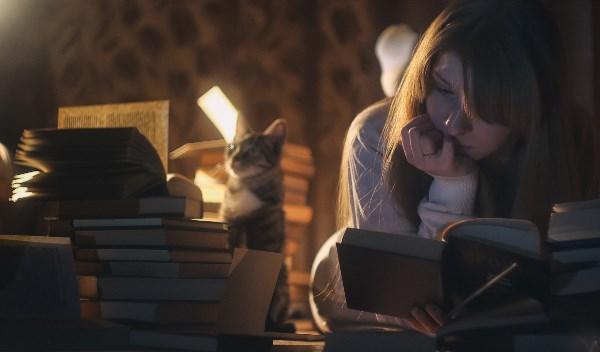 """Жена, кошка и """"Замок Броуди"""" :)"""