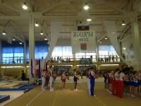 Туляки на соревнованиях по спортивной гимнастике в Брянске., Фото: 30