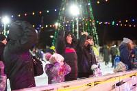 В Туле завершились новогодние гуляния, Фото: 24