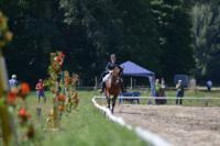 В Ясной поляне стартовал турнир по конному спорту, Фото: 53