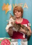 Выставка кошек в Искре, Фото: 67