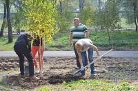 В Пролетарском районе высадили молодые деревья, Фото: 12