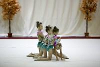 """Соревнования по художественной гимнастике """"Осенний вальс"""", Фото: 59"""