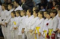 Соревнования на Кубок Тульской области по каратэ версии WKU. 29 декабря 2013, Фото: 9