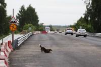 Открытие двустороннего движения по Узловскому путепроводу, Фото: 3