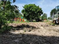 вырубка деревьев во дворе дома №33 по ул. Горького в Туле, Фото: 4