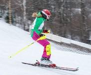 Третий этап первенства Тульской области по горнолыжному спорту., Фото: 39