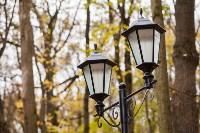 Платоновский парк, Фото: 20