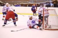 Легенды советского хоккея в Алексине., Фото: 15
