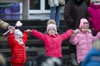 Широкая Масленица с Тульским цирком: проводы зимы прошли с аншлагом, Фото: 36