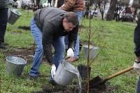 В сквере «Тульское чаепитие» высадили 100 саженцев вишни, Фото: 5