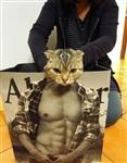 Мускулистые коты, Фото: 1