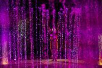 Шоу фонтанов «13 месяцев»: успей увидеть уникальную программу в Тульском цирке, Фото: 252