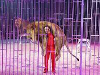 Акция «Во имя бьющихся сердец» для медработников в цирке, Фото: 1