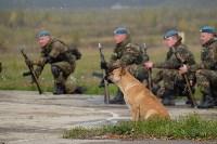 Оружейная Россия, 08.10.2015, Фото: 123