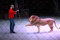 Новая программа в Тульском цирке «Нильские львы». 12 марта 2014, Фото: 9