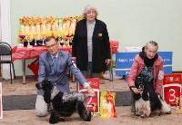 """Выставки собак в ДК """"Косогорец"""", Фото: 42"""