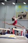 Соревнования по спортивной гимнастике на призы Заслуженных мастеров спорта , Фото: 52