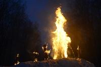 В ЦПКиО сожгли чучело зимы, Фото: 32