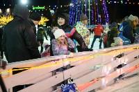 В Туле завершились новогодние гуляния, Фото: 70