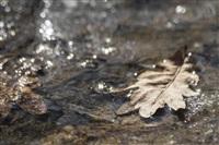 Как туляки весну встречают?, Фото: 7