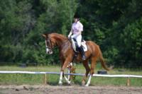 В Ясной поляне стартовал турнир по конному спорту, Фото: 46
