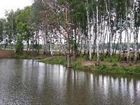 Эко-парк «Моя деревня», Фото: 29
