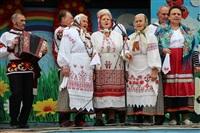 Юбилейный слёт гармонистов, Фото: 12