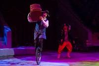 """""""Тайна пирата"""" в Тульском цирке, Фото: 12"""